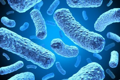 Bacteria and bacterium cells floating in microscopic space as a medical illustration of bacterial disease infection in a human body or organic substance as a health care icon.